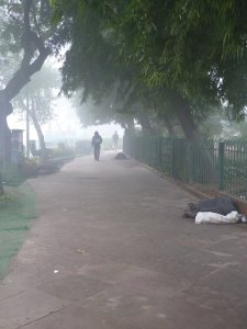 The cold morning December streets with their homeless of New Delhi